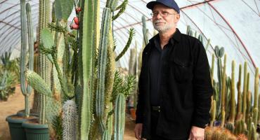 Kolekcjoner kaktusów szuka domu dla swojego zbioru