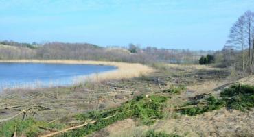 Właścicielka nieruchomości ukarana za wycinkę drzew nad jeziorem Liniewskim