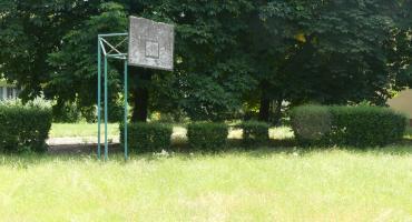Koszykarstwo chaszczowe