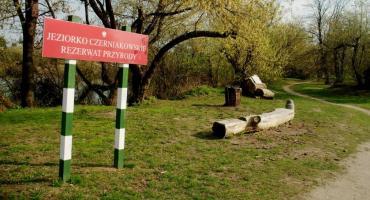 Czy to prawda, że powstanie regularne miasto w otulinie rezerwatu Jeziorko Czerniakowskie?