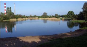 Jeziorko Czerniakowskie z zakazem kąpieli