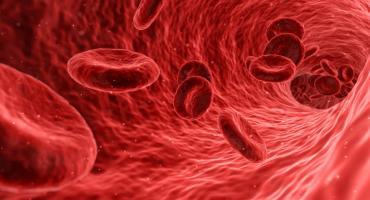 Świąteczna zbiórka krwi w Radomiu