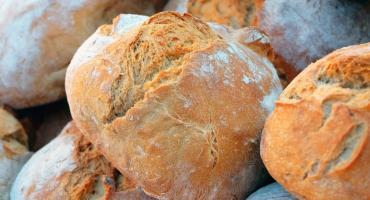 Przed nami XXI Święto Chleba w Muzeum Wsi Radomskiej