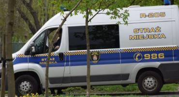 Kradzież i znieważenie funkcjonariuszy Straży Miejskiej