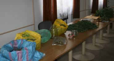 Kryminalni z Lipska ujawnili 5 kg marihuany