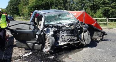 Śmiertelny wypadek na krajowej 79 w Żabieńcu