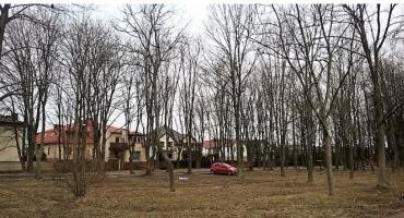 Urzędnicy z ursuskiego ratusza ratują 440 drzew z terenu byłego ZSZ im. W. Piecka