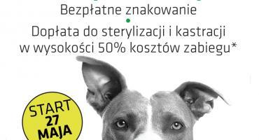 Znakowanie i sterylizacja/kastracja psów i kotów w gminie Michałowice