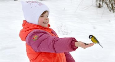 Jak zadbać o zwierzęta zimą?