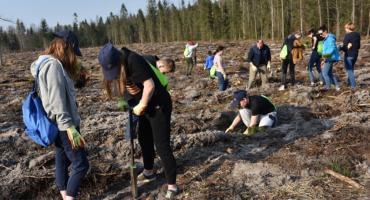 PGE wspólnie z dziećmi posadziła 1500 drzew