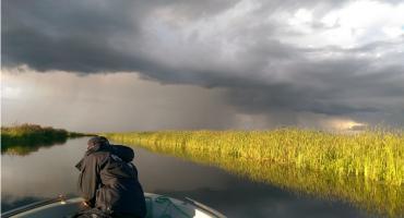 Lecą Wióry: Gorszy niż ekolog