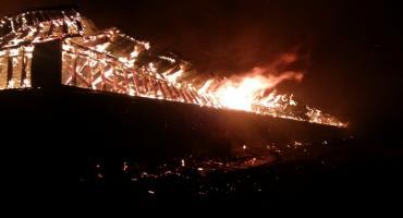 Pożar w Nowoberezowie. Żywcem spłonęło 2,5 tys. świń