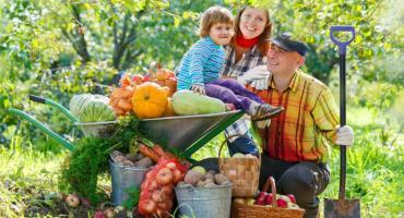 Piątek – dniem owoców i warzyw