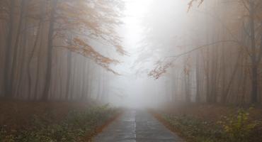 Na północy regionu mgłę będzie można niemal nożem kroić