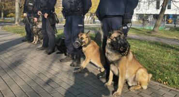 Policyjne psy też się szkolą i podnoszą swoje umiejętności