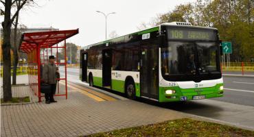 Kontrola potoku pasażerów BKM kosztować będzie prawie 350 tys. złotych