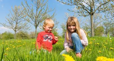 Szukamy wiosny. Dołącz do zabawy ze swoimi dziećmi
