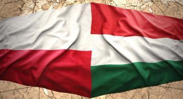 Zielonka - Węgierski koncert