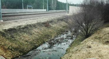 Rembertów się wstydzi - lokalna sprawa dla ekologów