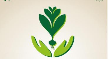 Wspólne sadzenie drzew i cebulek