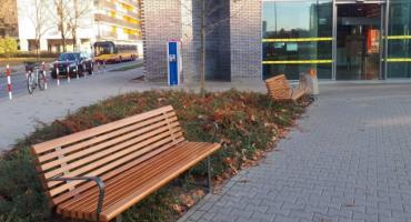 Zadecyduj gdzie staną ławki w stolicy