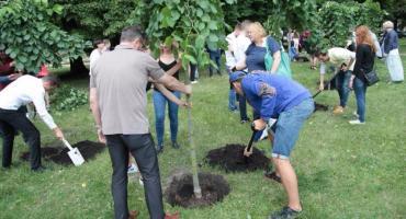 Maturzyści posadzili drzewa na Woli