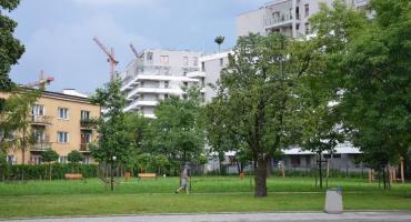 Zielona oaza przy Jana Kazimierza