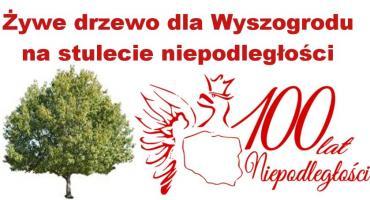 Żywy pomnik na 100 lecie Niepodległości - Zapraszam do Zorganizowania komitetu obchodów