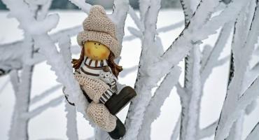 Zima w sadzie - prace i zabiegi ochronne