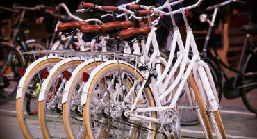 Rowery Miejskie wracają na ulice Żyrardowa