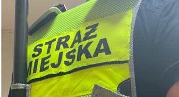 Kronika Straży Miejskiej 08 - 17.11.2019r.