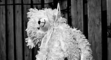 Depresja i próby samobójcze dzieci kontra niewydolność systemu