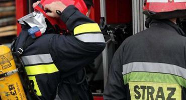 Łowiccy strażacy uratowali psa, który wpadł do studni