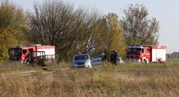 Nietypowa interwencja strażaków pod Łowiczem. Zostali wezwani do rogatego uciekiniera