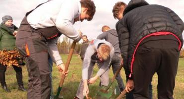 Posadzono 900 sadzonek drzew i krzewów na terenie Skansenu