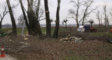 Trwają prace przy realizacji zadania z budżetu obywatelskiego na osiedlu Starzyńskiego