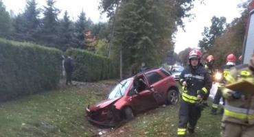 Samochód wpadł do rowu w miejscowości Strzyżew
