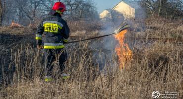 Pierwszy w tym roku pożar traw - sezon na wypalanie otwarty