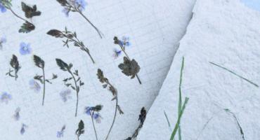 Art-papier – warsztaty czerpania papieru w BiFK