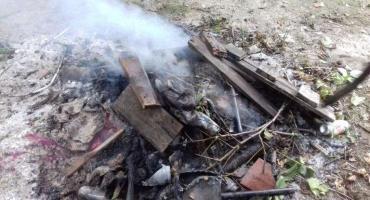 Mandat za spalanie odpadów