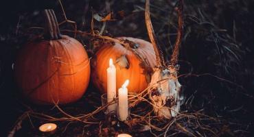 Mroczny Wrocław – nowa edycja na Halloween