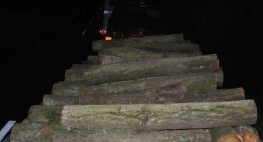 Odpowiedzą za kradzież drewna z lasu i posiadanie narkotyków