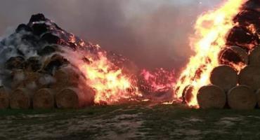 Ogromny pożar słomy przy fabryce pelletu w Jordanowie Śląskim