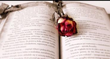 Książka nie gryzie: miłość