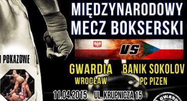 Gwardia Wrocław - Banik Sokolov