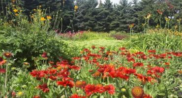 Jak zmieni się park przy Górce Kazurce?
