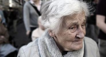 Polskie Babcie podbijają serca