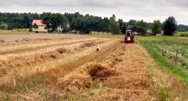 Wiązowna: Szkolenie dla rolników ze składania wniosków o dopłaty przez internet
