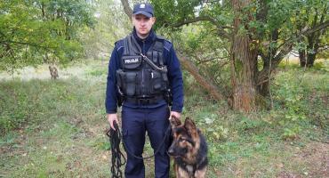 Uciekinier z miejsca wypadku wytropiony przez psa
