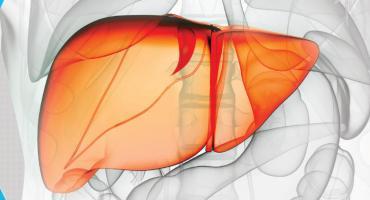 Bezpłatne badania na wirusa HCV w Otwocku